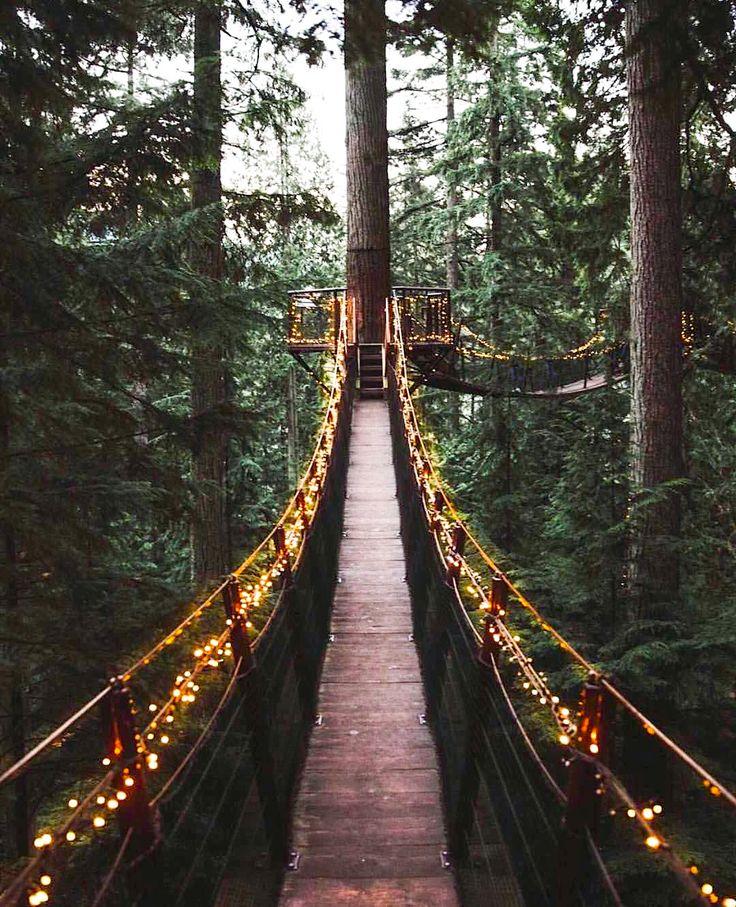 ***Capilano Suspension Bridge (North Vancouver, BC) By