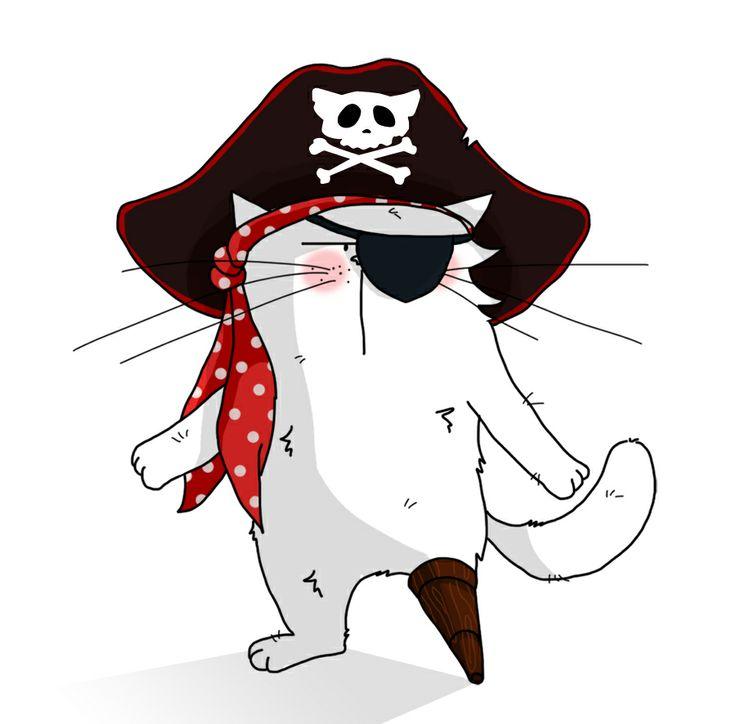 Cat Sparrow !