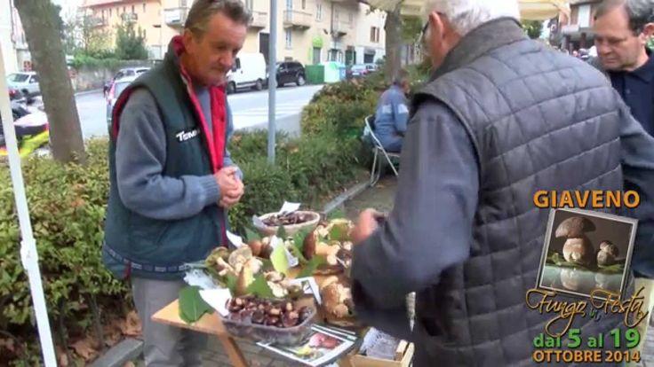 GUSTO channel: Fungo in Festa 2014 Giaveno
