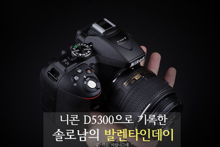 Nikon D5300으로 기록한 솔로남의 발렌타인데이