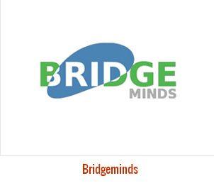 Logo Design For  Bridge Minds