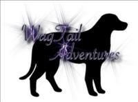 www.wow-a2z.com member 'Wag Tail Adventures' offer a good value for money service for those of you who have pets which need extra time and care.