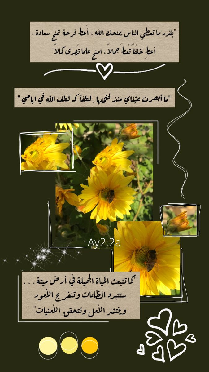 اقتباسات دينية خلفيات صور ملصقات ستوري سناب و انستا Beautiful Quran Quotes Flower Phone Wallpaper Creative Instagram Photo Ideas