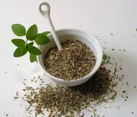 El orégano es una importante hierba culinaria y con propiedades curativas que se ha sido utilizada por curanderos y cocineros durante miles ...