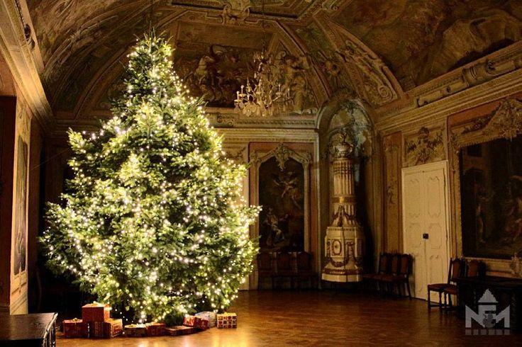 Karácsonyfa a díszteremben.  #Christmas #christmastree #Advent #treelighting #greathall #december #castle #photooftheday #museum #muzeum #sarvar #hungary
