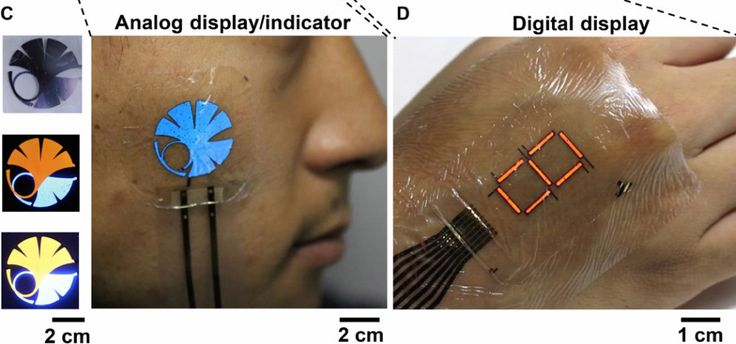 This tattoo-like display is made possible by a new ultra-thin protective 'E-skin' | It sounds like something out of Star Trek: a patch thinner than a band-aid that you slap on your arm and, within moments, it lights up with heart rate, blood..