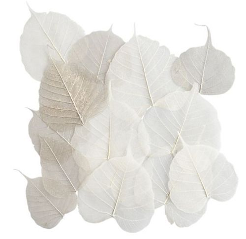 Shades of white: Wall Decor, Metals Leaves, Shades Of White, Art Inspiration, Favorite Color, White Leaves, Fresh White, Reckless Texture, Tables Decor
