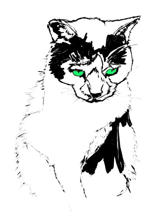 ARTFINDER: Old Green Eyes by Bo Lanyon - 'In ancient times cats were worshipped as gods; they have not forgotten this.' Terry Pratchett  Limited edition of 150.  Printed on 330 gsm Somerset Enh...