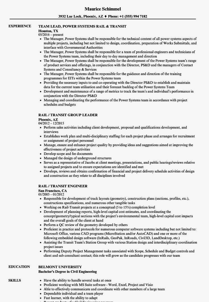 Professional Resume Example Instant Download 1 Page Resume Example For Ms Word Diy Resume Example Resume Examples Resume Skills Engineering Resume