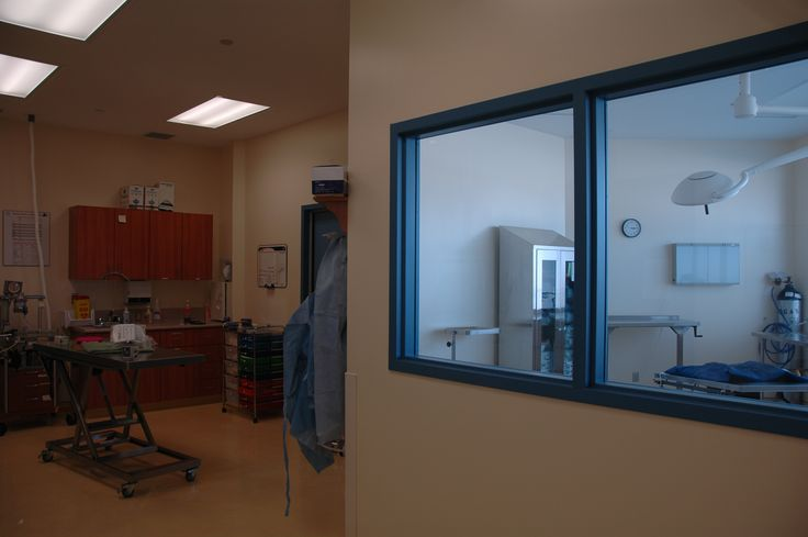 Pre-Operative Area and Large Surgical Suite