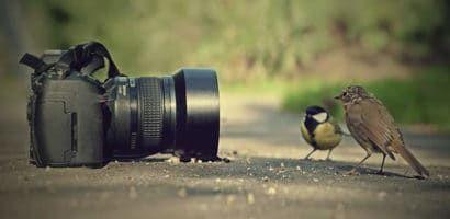 Curso de fotografia para iniciantes online - onde fazer o seu!:https://www.guiadecursosonline.com/curso-de-fotografia-para-iniciantes-online/