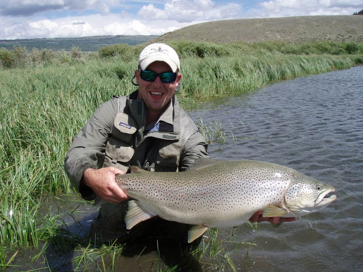 57 best images about fishingstuffs on pinterest brown for Green river fishing