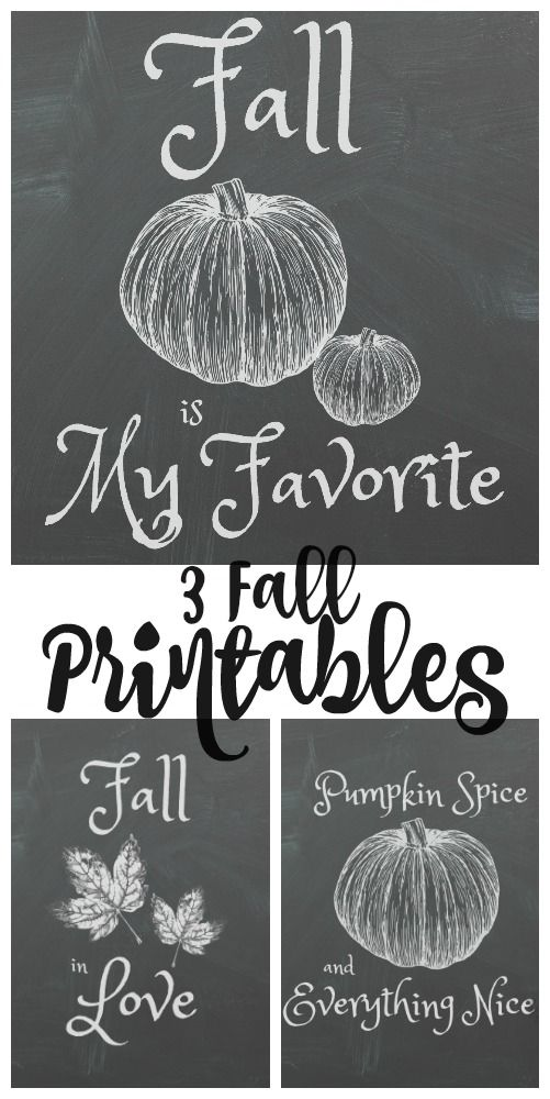 3 Fall Chalkboard Printables you'll love and they're free!