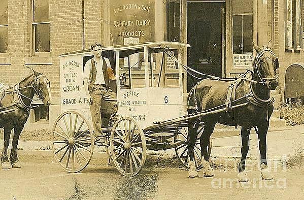 George Timlow Ogden with Horse Drawn Milk Wagon ca 1915. A.C. Ogden Milk Company, Middletown, New York. Peter Gumaer Ogden Collection