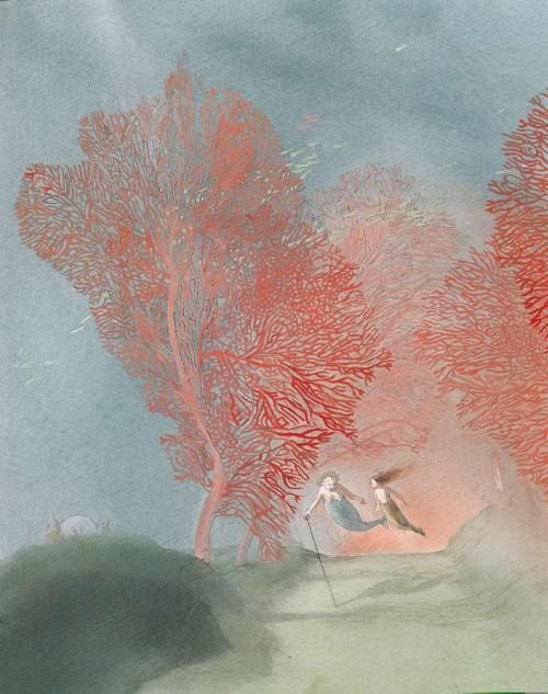 Lisbeth Zwerger-love the coral trees