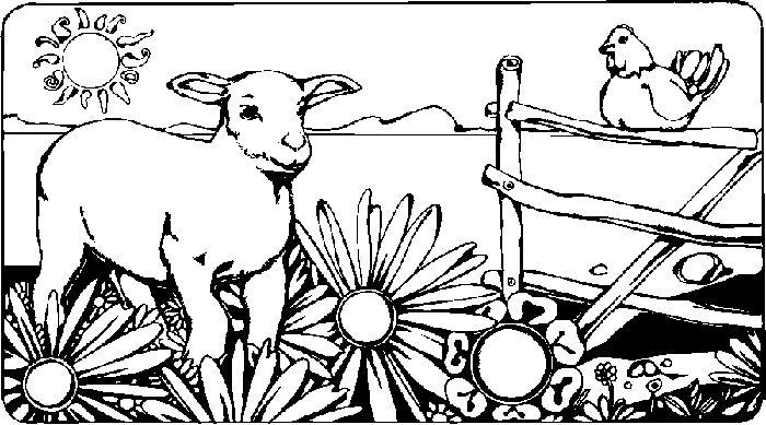 farmanimalscoloringpages3gif 700×389  bauernhof