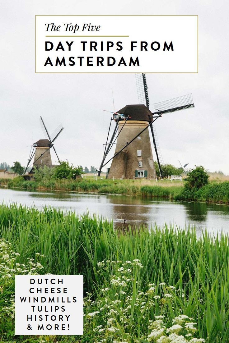 best day trips from amsterdam, holland, the netherlands travel guide, dutch cheese, dutch windmill, history, tulip, keukenhof, hague, food, tours, sights, what to see, what to do, best things