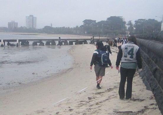 Students at work - St Kilda pier survey site