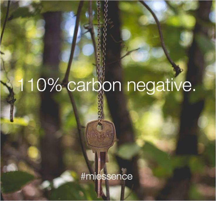 Miessence is committed to going a step beyond 100% carbon neutral by going carbon negative and offsetting a further 10% beyond calculated emissions.