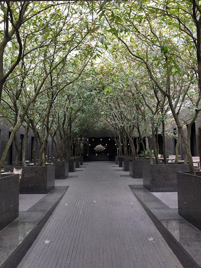 Id es cr atives pour un jardin paysagiste unique les for Amenagement jardin couloir