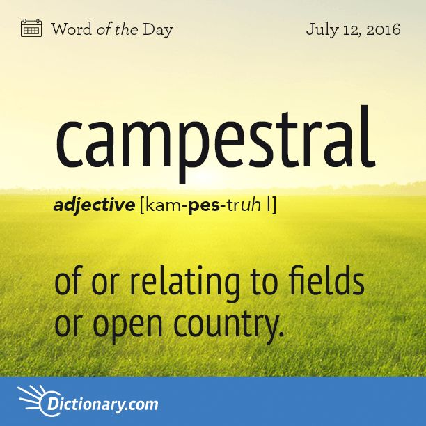 Dictionary.com's Word of the Day - campestral - of or relating to fields or open country.
