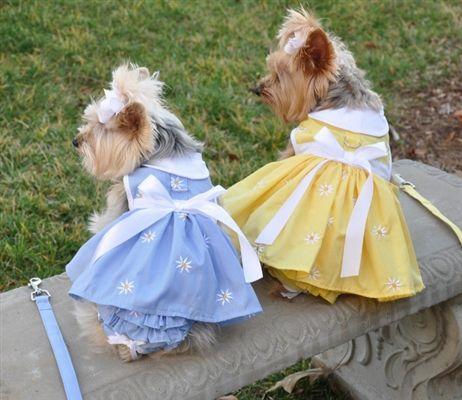Soft Blue or Yellow Denim Daisy Dress ON SALE NOW only 1 size Large yellow dress left! Available at http://doggyinwonderland.com/item_1597/Soft-Blue-or-Yellow-Denim-Daisy-Dog-Dress-Set-with-Matching-Panties-and-Leash.htm