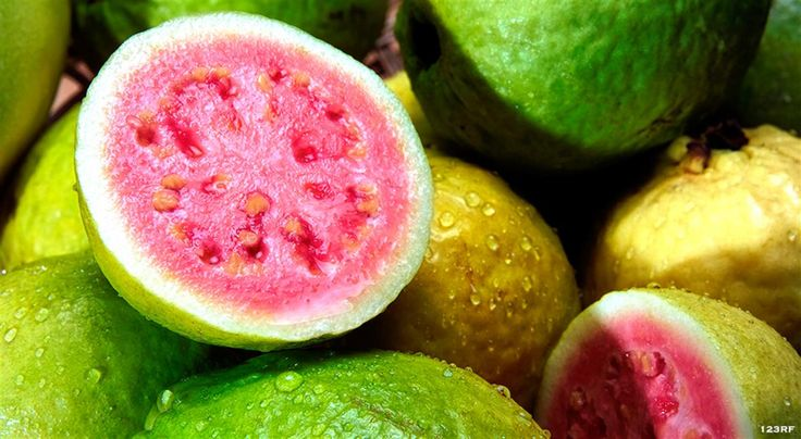 From 'Armrood' to 'Zero point,' 26 interesting facts and figures about guava: varieties, nutritional facts and recipes to enjoy this evergreen Caribbean fruit. Read on! https://www.finedininglovers.com/stories/guava-nutrition-facts/