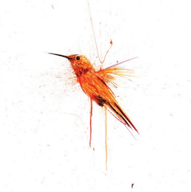 Colibrí de Dave White para su colección Natural Selection