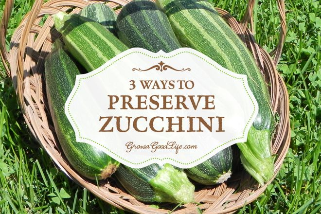 3 Easy Ways to Preserve Zucchini | preserving our harvest