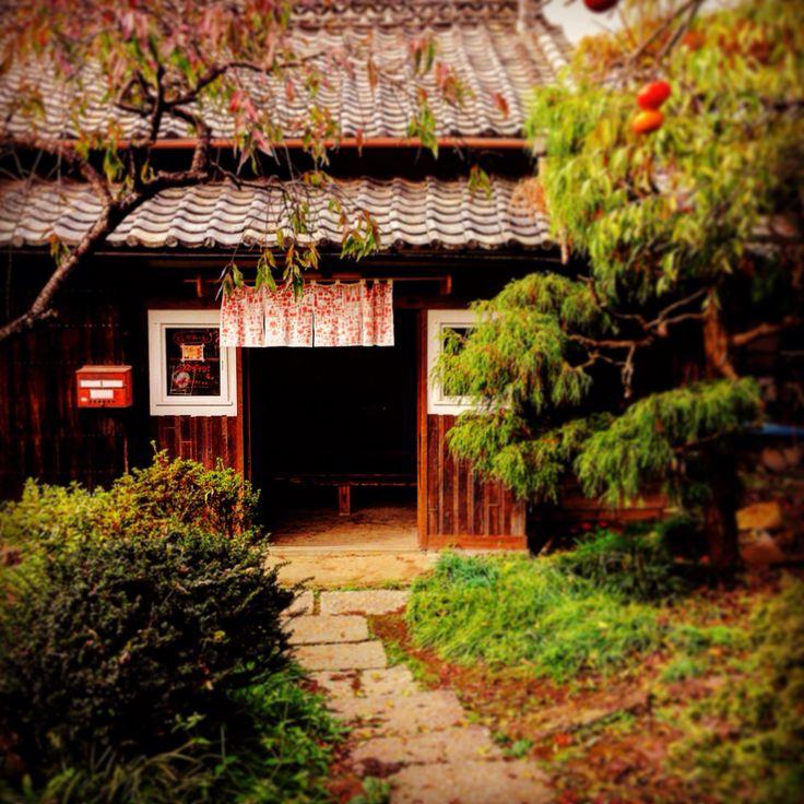 栃木県 益子町 ハナメガネ商会