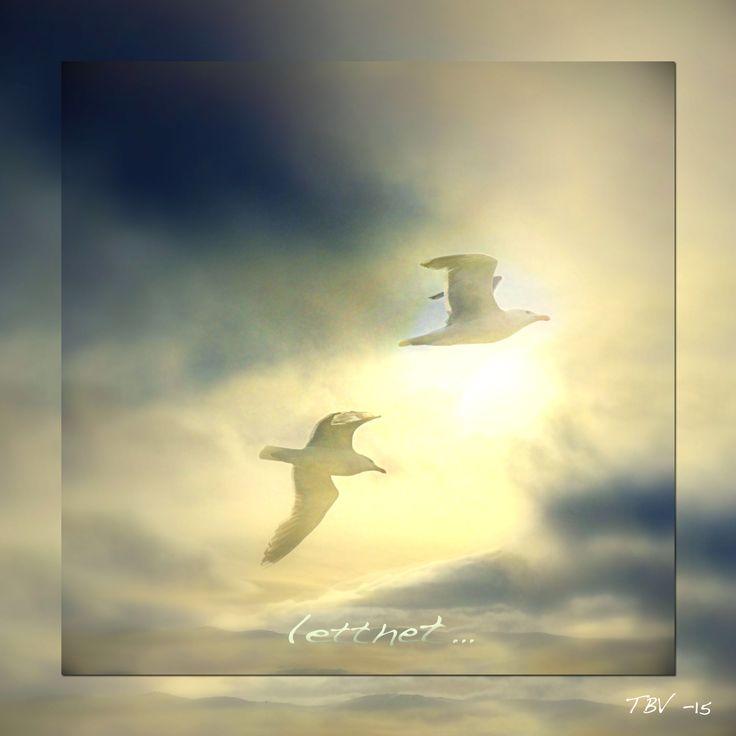 """""""Letthet"""" av: Tone Bremnes Vandemir"""