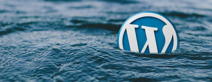 WordPress security holes – online training