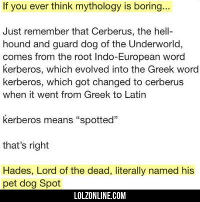 If You Ever Think Mythology Is Boring...#funny #lol #lolzonline