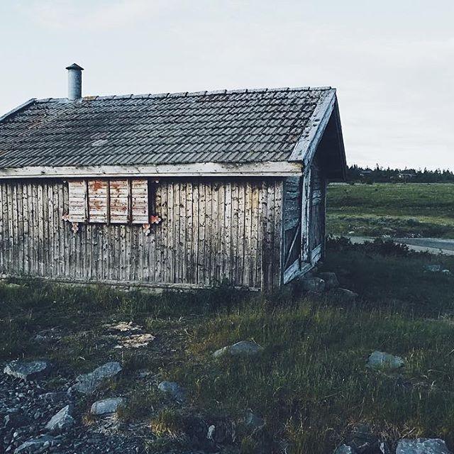 Mimre tilbake til fine fiskeminner på hytta 👌🏼#tbt #coffee #fishing #fun #haha #house #cabin #houseinthemountains #norway #norwegian #sjusjøen #photography #photographer #photographysouls #photo