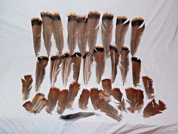 Lot Turkey Feathers & Beard Fly Tying Supplies #Unbranded