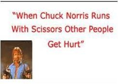 I've decided to raise my children on Chuck Norris facts alone!