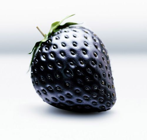 I also have White strawberries, Giant and African Blue strawberries for sale - Black Strawberry - Strawberries Seeds x 30+ These seeds produce delicious black strawberries that are lower in sugar and acid than their red counterparts.