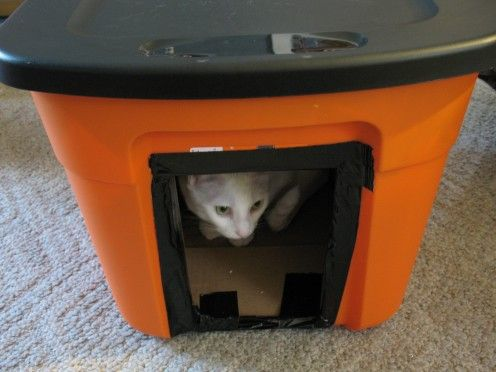 Frugal and Homemade Winter House for Stray Cats - A cheap way to provide outdoor cats with a warm house.