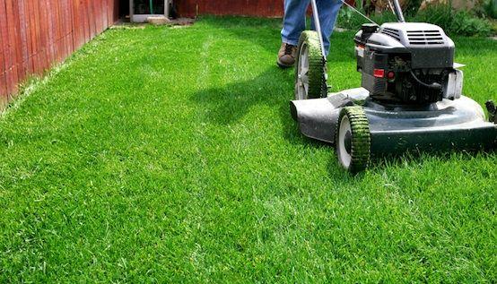 7 Ways to Cut the Cost of Yard Maintenance :: Mint.com/blog