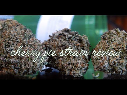 CHERRY PIE MEDICAL MARIJUANA STRAIN REVIEW | 420 FRIENDLY | HIGH SOCIETY