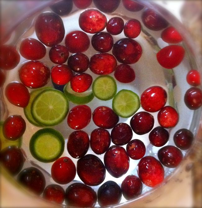 Cranberry-Lime Infused Water.