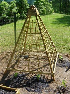plans for a cucumber trellis                                                                                                                                                                                 More