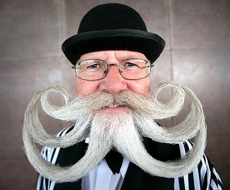 i can dig it: Funny Beard, Craziest Beards, Ideas, Awesome, Craziest Hairstyles Mustaches, 25 Craziest, Things, Octopus, Facial Hair