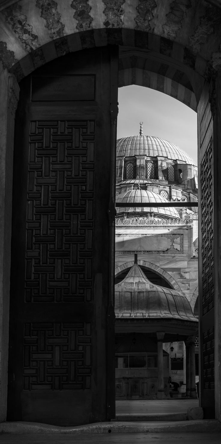 Doors of Istanbul with the view of Sehsadebasi Mosque on background