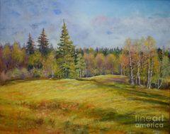 Raija Merila Painting - Landscape From Pyhajarvi by Raija Merila