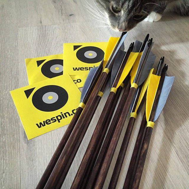 My first set of custom arrows. #WeSpin branded! #archery #nofilter #catsallaround