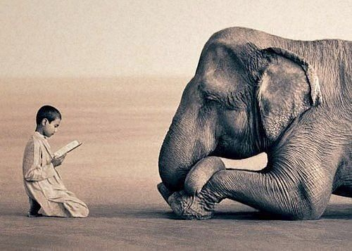And God bless all elephants...