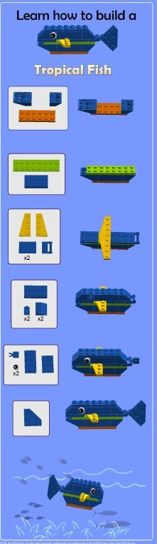 Build your own LEGO®️️ tropical fish!