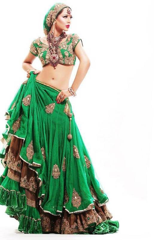 Pakistani Wedding Dresses | 2012 Bridal Wedding Lehenga Choli or the whole Wedding special dress ...