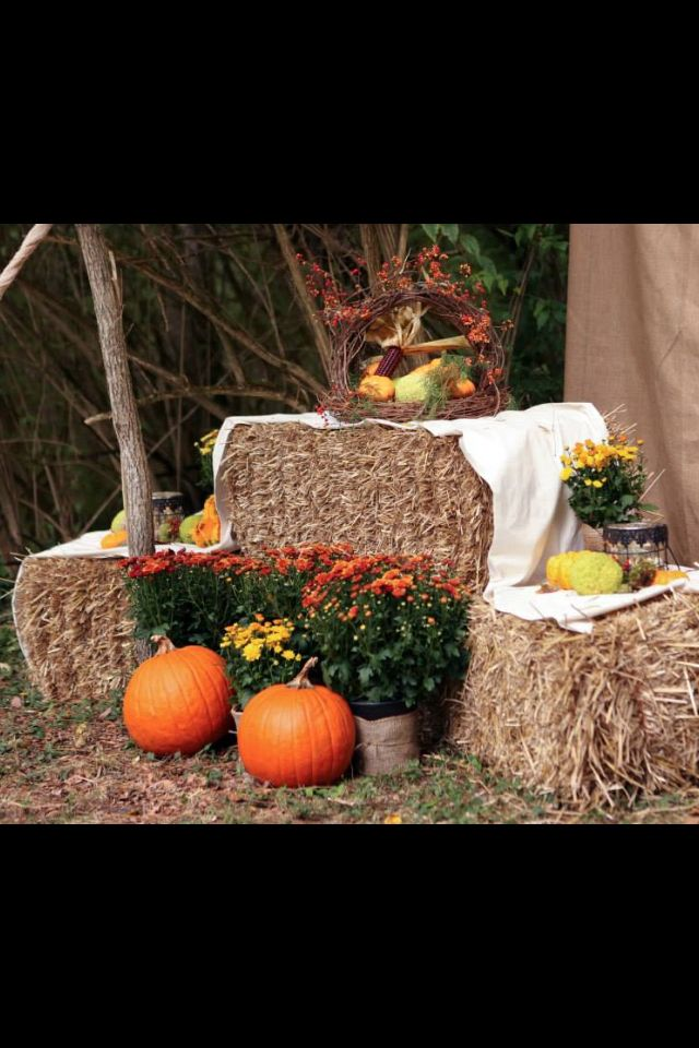 Fall decorations by ceremony tent.